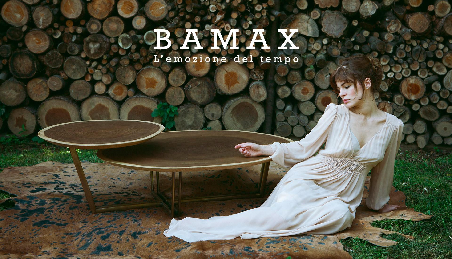 Фабрика Bamax